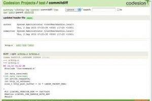 Développement : Codesion livre un service Git hébergé