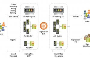 SAP vante les atouts des bases Sybase ASE et IQ combinées à HANA