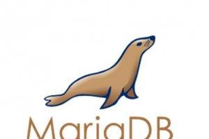 Infor engage son offre dans l'Open Source avec Red Hat, MySQL et MariaDB