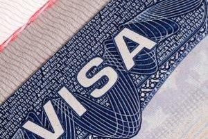 Le gouvernement pourrait créer un visa start-up