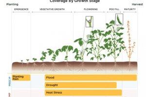 Monsanto investit pr�s de 1 Md$ dans le big data