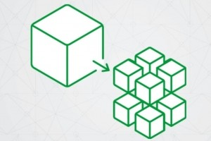 Nginx lance un serveur d'applications pour microservices