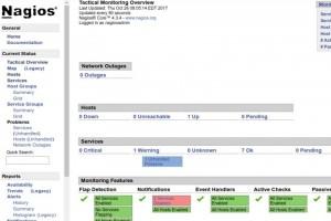 Nagios Core 4.4.2 pour Linux : Le test