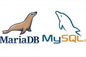 7 fonctionnalités à ne pas manquer dans MySQL et MariaDB