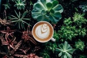 Le ramasse-miettes du G1 de Java bientôt plus efficace