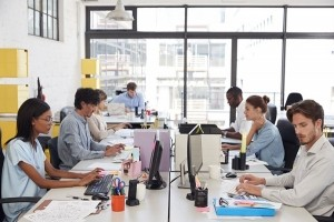 Vers une professionalisation du digital workplace ?