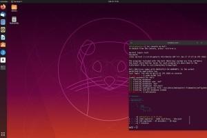 Kali Linux  : Une boîte à outils pour pentest