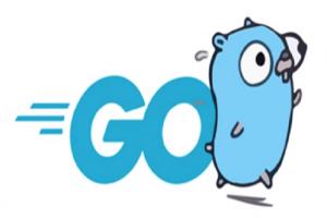 Des génériques en vue en 2021 pour le langage Go de Google
