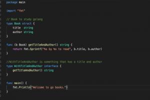 La version de 1.15 de Go minimise la taille des binaires