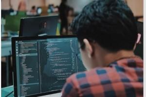 Emploi IT: la France recrute plus de data analyst et d'UX designer