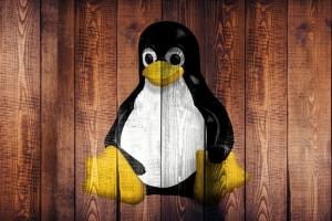 La Fondation Linux cr�e une certification pour d�butant