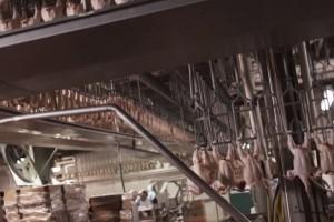Un ransomware coupe la production du g�ant de l'agroalimentaire JBS