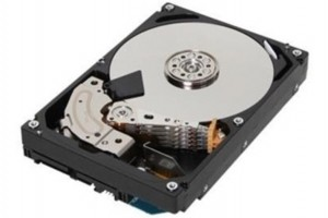 Demande accrue de disques durs en Europe, un effet Chia ?