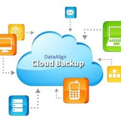 La multiplication des applications tournant dans le cloud oblige à redéfinir les politiques de sauvegarde. (Crédit D.R.)