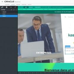 « L'outil Maxymiser nous a permis de changer nos relations avec l'IT », indique Khalid Baijouj, responsable des ventes digitales chez Kaspersky France, Afrique du Nord et de l'Ouest. (Crédit D.R.)